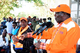 New ODM rules to bar civil servants from party ticket   Nation